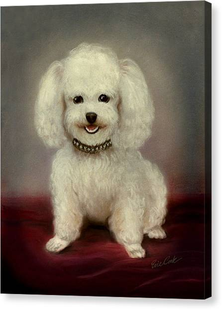 Cutest Poodle Canvas Print