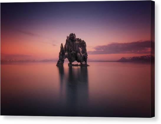 Ocean Sunsets Canvas Print - Rhino by David Mart??n Cast??n