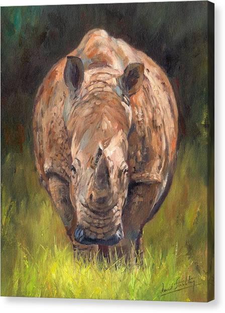 Rhinos Canvas Print - Rhino by David Stribbling