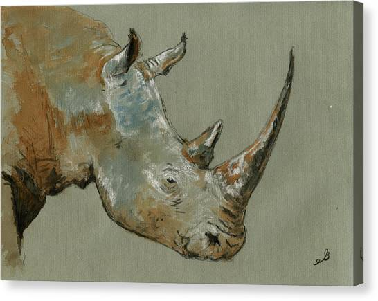 Rhinos Canvas Print - Rhino Study by Juan  Bosco