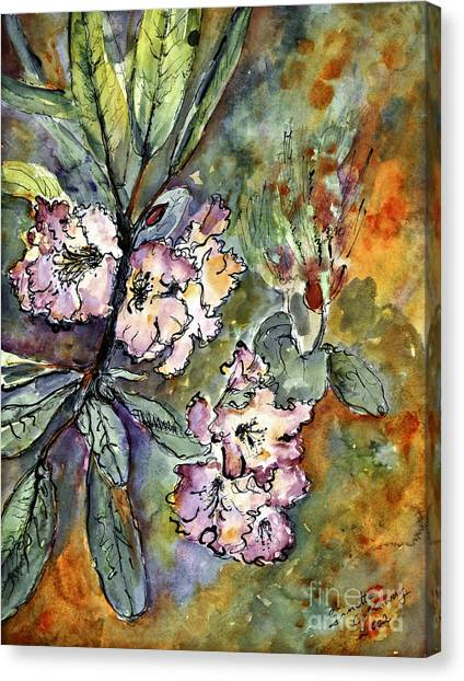 Rhododendron Watercolor And Ink Canvas Print