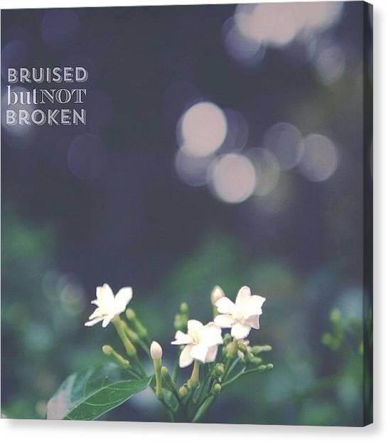 Kiwis Canvas Print - Bruised Not Broken by Jade Kiwi