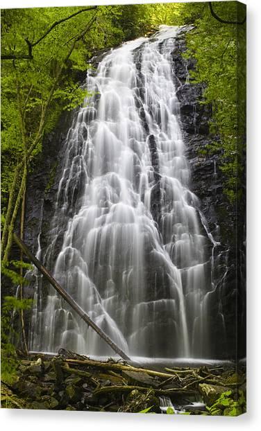Blue Ridge Parkway Waterfalls Canvas Print - Ribbon On Rocks by Andrew Soundarajan
