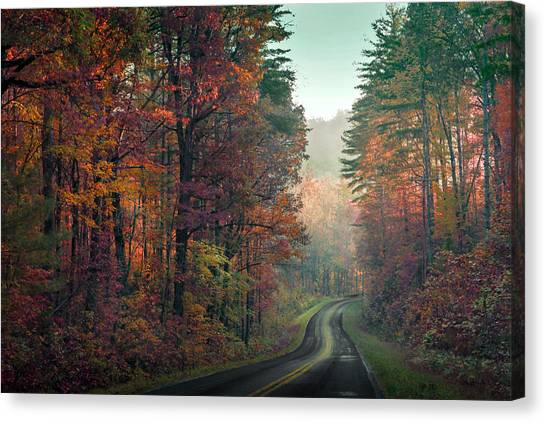 Ribbon Road Canvas Print by William Schmid