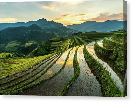 Rice Terraces At Mu Cang Chai, Vietnam Canvas Print by Chan Srithaweeporn