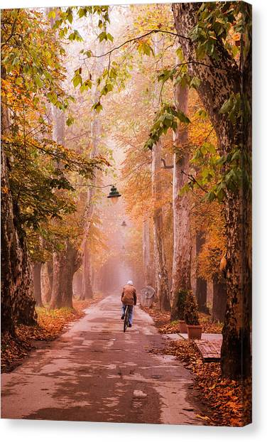 Ride A Bicycle Canvas Print