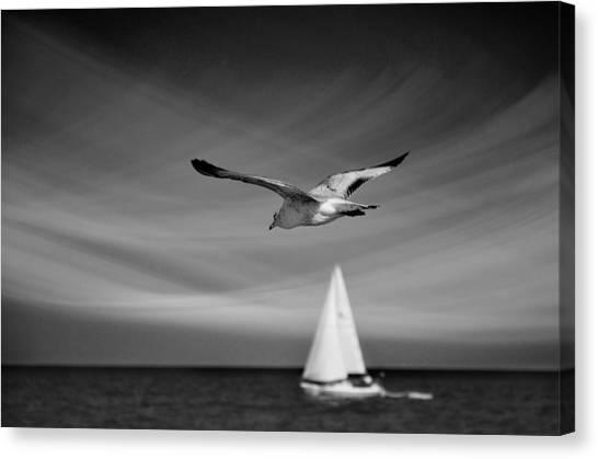 Karma Canvas Print - Ride The Wind by Laura Fasulo