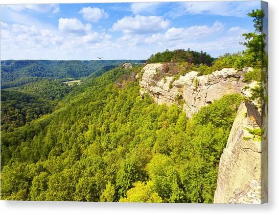 Ridge Top View Canvas Print