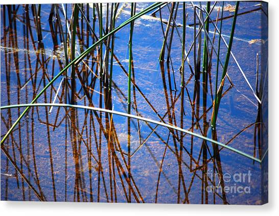 Ridges Reflection Canvas Print