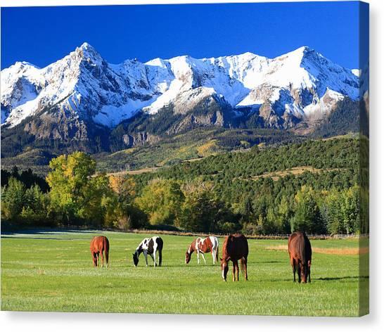 Ridgeway Rl Ranch Canvas Print by Robert Yone