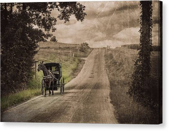 Bay Horse Canvas Print - Riding Down A Country Road by Tom Mc Nemar