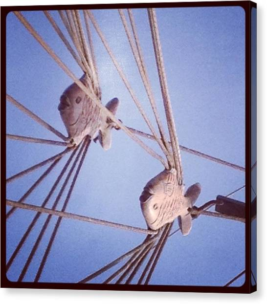 Rigging Canvas Print by Maeve O Connell