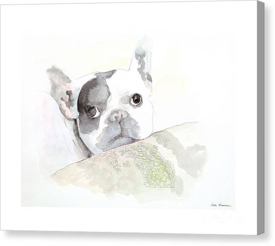 French Bull Dogs Canvas Print - Rigley by Joan Sharron