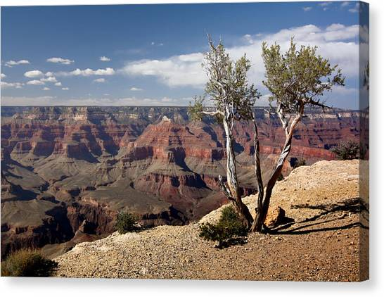 Rim Of The Grand Canyon Canvas Print