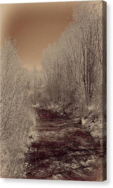 Rio Taos Bosque Iv Canvas Print