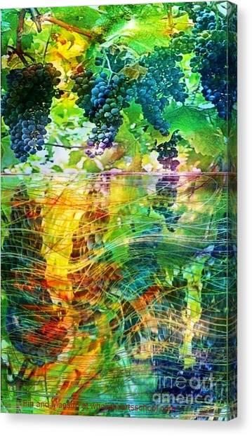 Ripened Vines Canvas Print