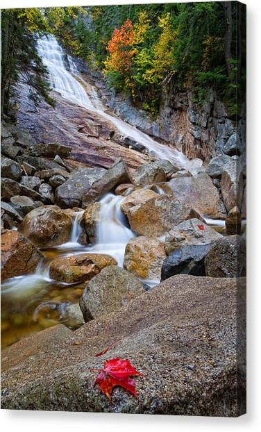Ripley Falls And Red Maple Leaf Canvas Print