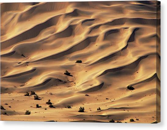 Gobi Canvas Print - Ripples In Sand And Dunes Of Gobi by Martin Moos