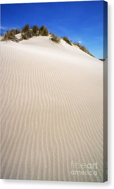 Ripples In Sand Dune Canvas Print by Sami Sarkis