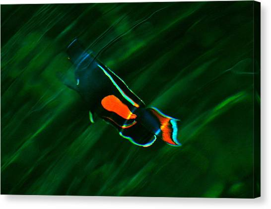 Ripples In The Water Canvas Print