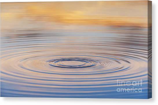 Fluids Canvas Print - Ripples On A Still Pond by Tim Gainey