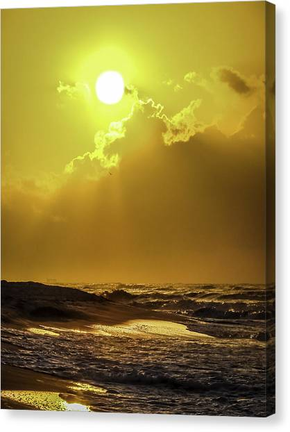 Rise And Shine Canvas Print by CarolLMiller Photography
