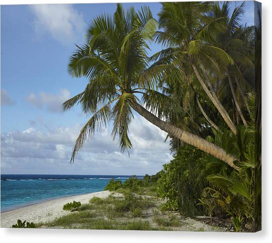 Ritidian Beach In Guam Canvas Print