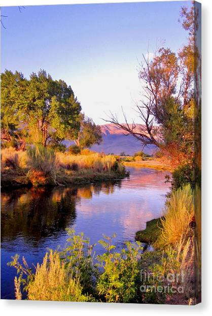 River Colors Canvas Print