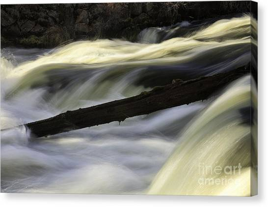 River Contours Canvas Print