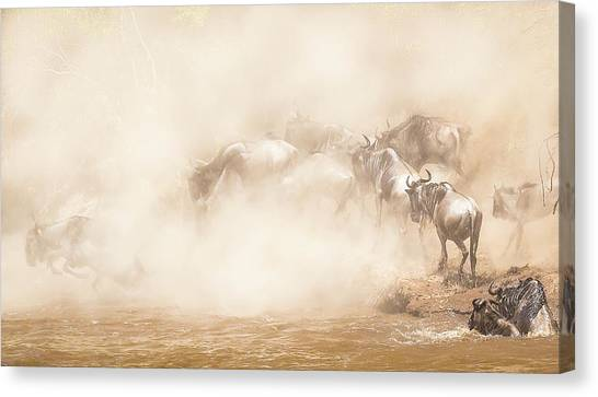 River Crossing Canvas Print by Eunice Kim