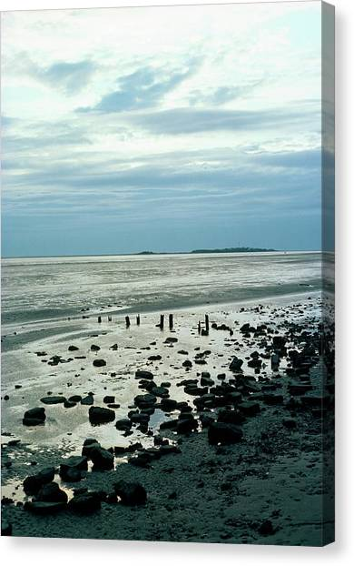 Delta Canvas Print - River Dee Estuary by Dr Rob Stepney/science Photo Library