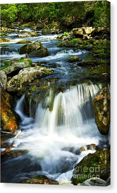 White River Canvas Print - River Flowing Through Woods by Elena Elisseeva