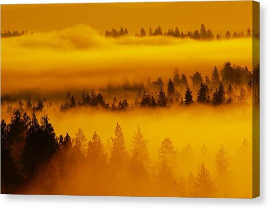 Canvas Print featuring the photograph River Fog Rising by Ben Upham III