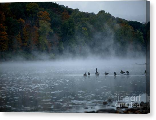 River Geese Canvas Print