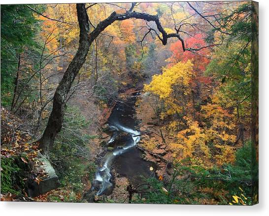 River Gorge Canvas Print