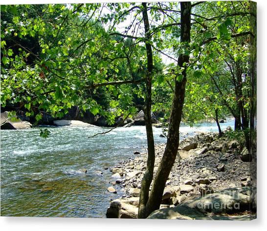 River Gorge Canvas Print