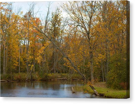 River In Autumn Canvas Print by Rhonda Humphreys