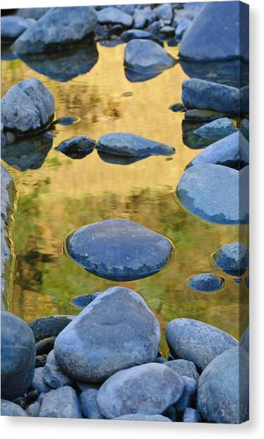 Canvas Print featuring the photograph River Of Gold by Sherri Meyer