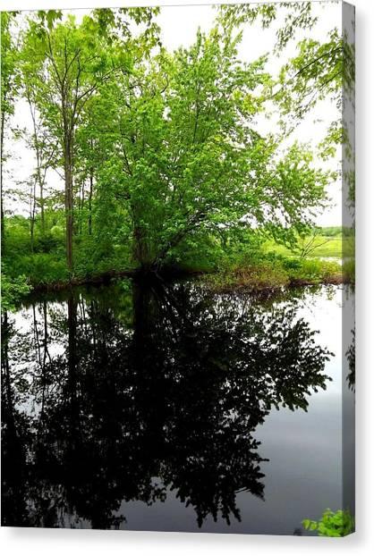 River Reflections Canvas Print by Dancingfire Brenda Morrell