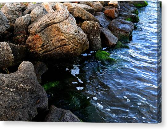 River Rocks Canvas Print by Victoria Clark
