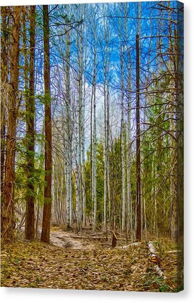 Canvas Print featuring the painting River Run Trail At Arrowleaf by Omaste Witkowski
