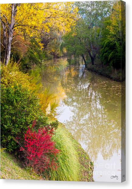 River With Autumn Colors Canvas Print