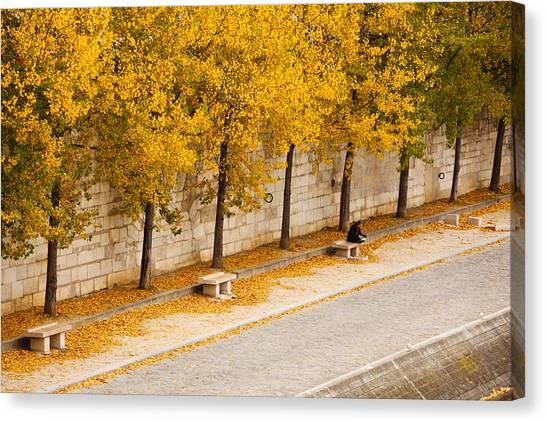Fallen Leaf Canvas Print - Riverfront, Ile De La Cite, Paris by Panoramic Images