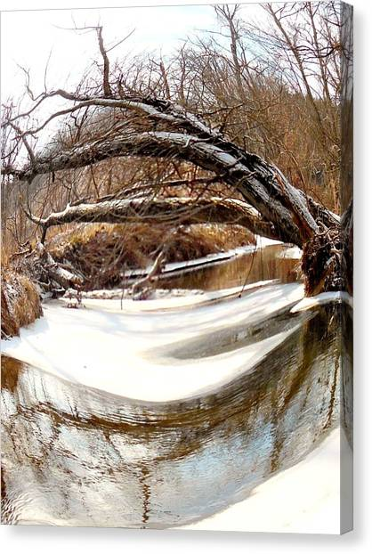 Rivers Eye Canvas Print by Sharon Costa