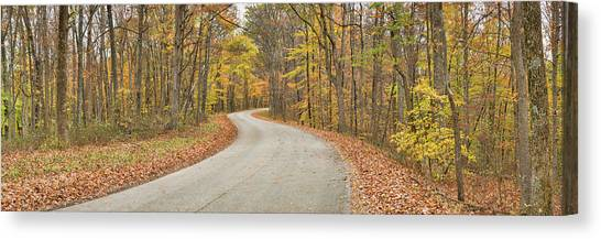 Indiana Autumn Canvas Print - Road Passing Through A Forest, Brown by Panoramic Images