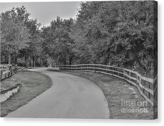 Road Path Canvas Print by Mina Isaac