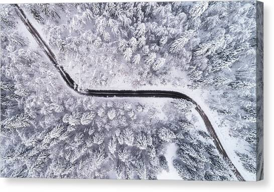 Hoarfrost Canvas Print - Road Through The Winter Forest by Ales Krivec