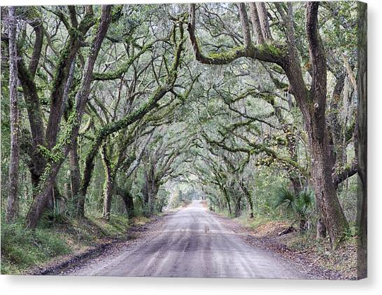 Road To Botany Bay Canvas Print