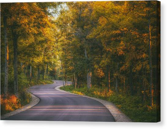 Road To Cave Point Canvas Print