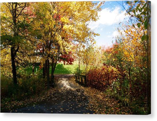 Road To Happyness Canvas Print by Jocelyne Choquette